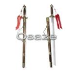pedang taichi wushu kungfu